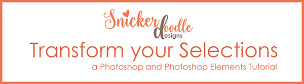 Transform your selection SnickerdoodleDesigns