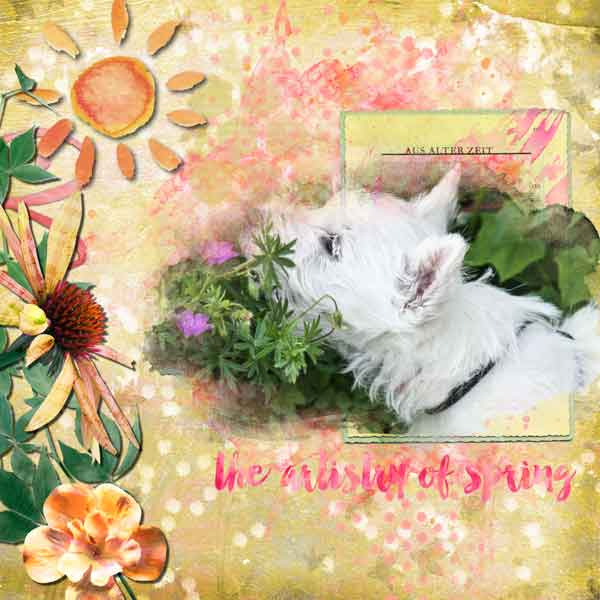 Artistry of Spring SnickerdoodleDesigns