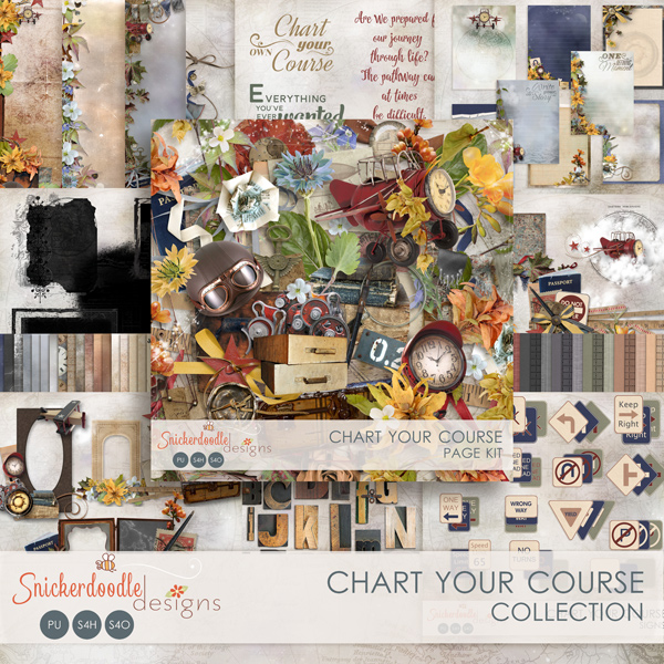 sd-chart-your-course-coll-600pv