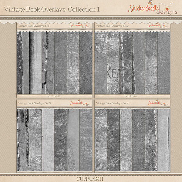 sd_vintage-book-overlays-coll-prev
