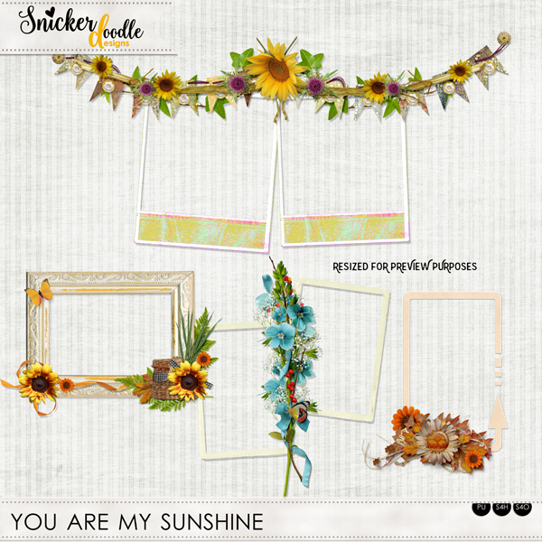 You are my sunshine SnickerdoodleDesigns