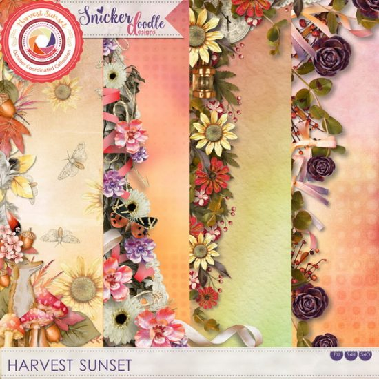 sd-harvest-sunset-borders-1000px_resize