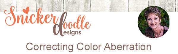Color Aberration Tutorial Photoshop SnickerdoodleDesigns