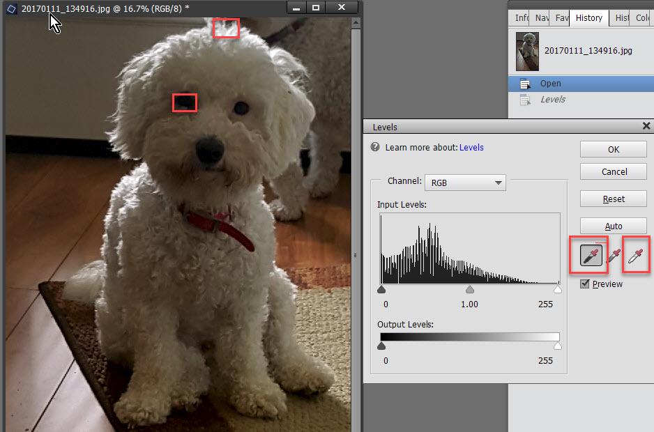Using Levels Tutorial Photoshop SnickerdoodleDesigns 3
