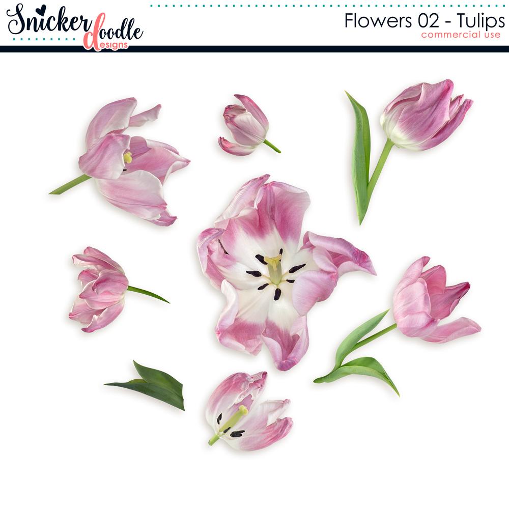 Tulips Snickerdoodle Designs
