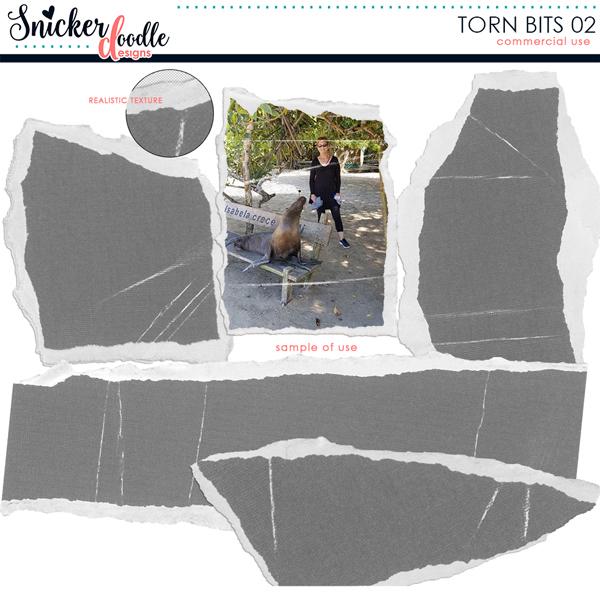 snickerdoodle-designs-torn-bits