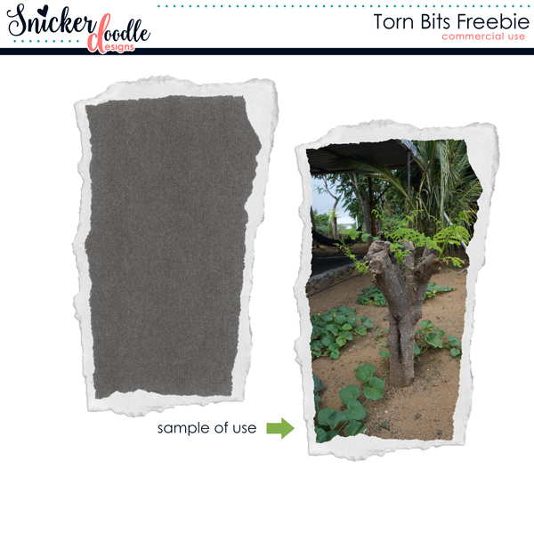 snickerdoodle-designs-torn-bits-freebie