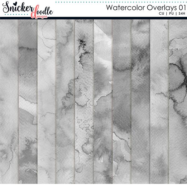 Watercolor Overlays Snickerdoodle Designs