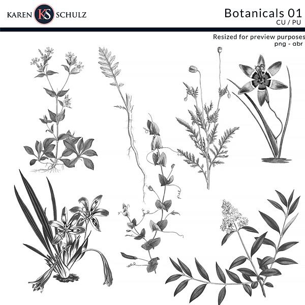 Botanical-stamps-by-karen-schulz