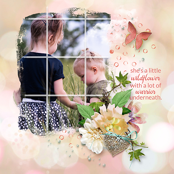 edit-karen-schulz-Window-templates-norma-01